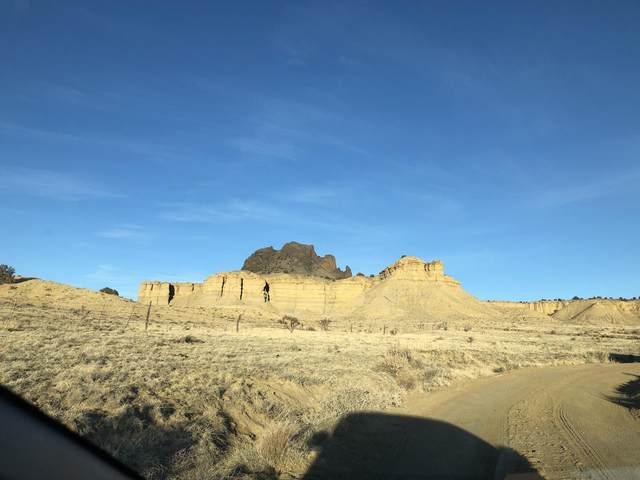 Torreon 279 Pass Cabezon Peak, San Ysidro, NM 87053 (MLS #986739) :: Sandi Pressley Team