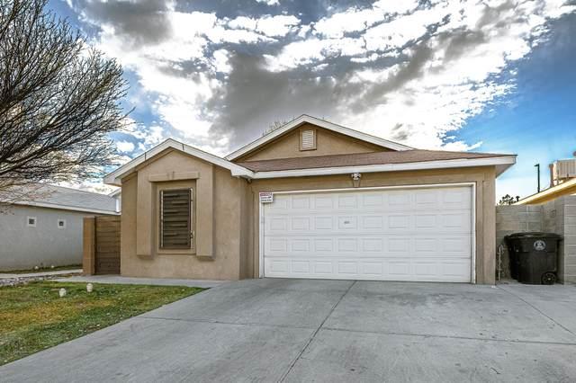 1009 72ND Place NW, Albuquerque, NM 87121 (MLS #986763) :: Sandi Pressley Team