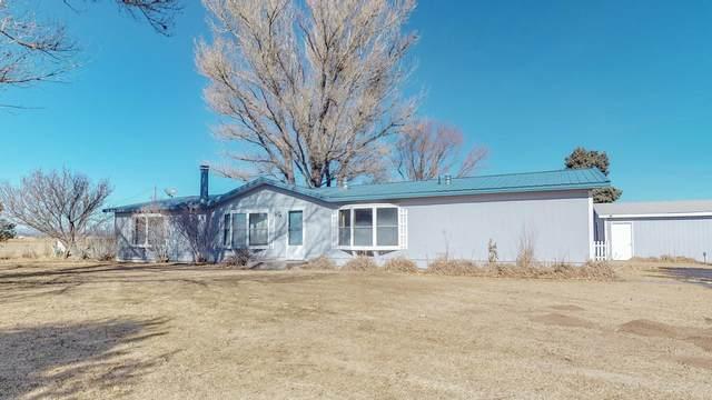 11 W Mcnabb Road, Moriarty, NM 87035 (MLS #986770) :: Keller Williams Realty