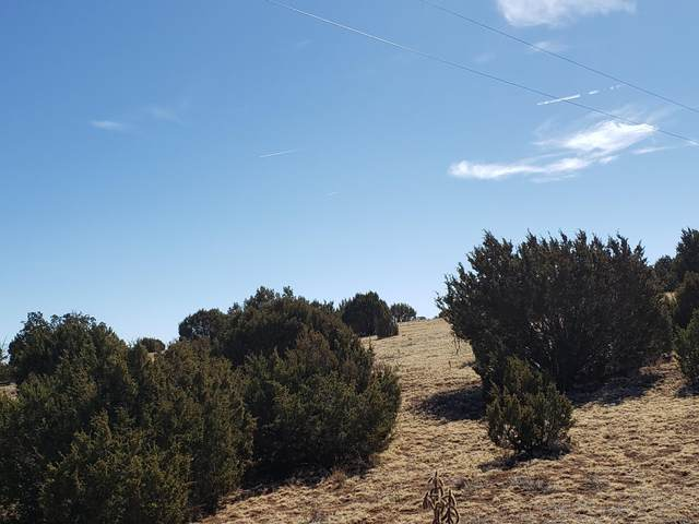 120 acres Off Luna Road, Estancia, NM 87016 (MLS #986777) :: The Buchman Group