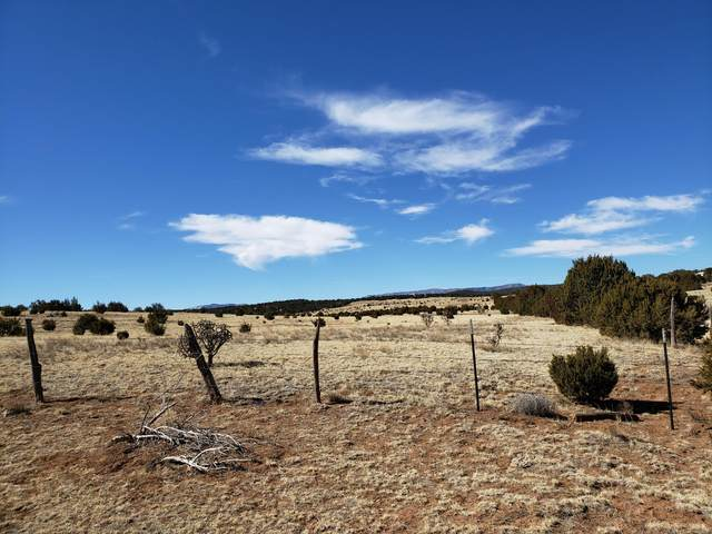 131 Luna Road  200 Acres, Estancia, NM 87016 (MLS #986778) :: The Buchman Group