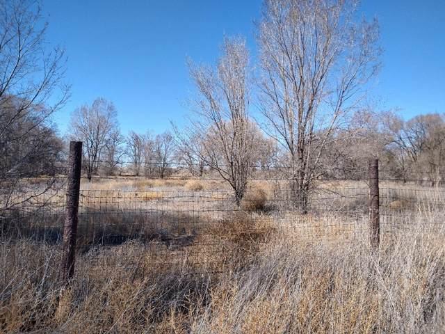 Lagunitas Lane SW, Albuquerque, NM 87105 (MLS #986810) :: The Buchman Group
