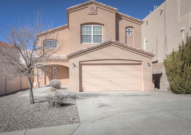 8235 Wolverine Drive NW, Albuquerque, NM 87120 (MLS #986833) :: Keller Williams Realty