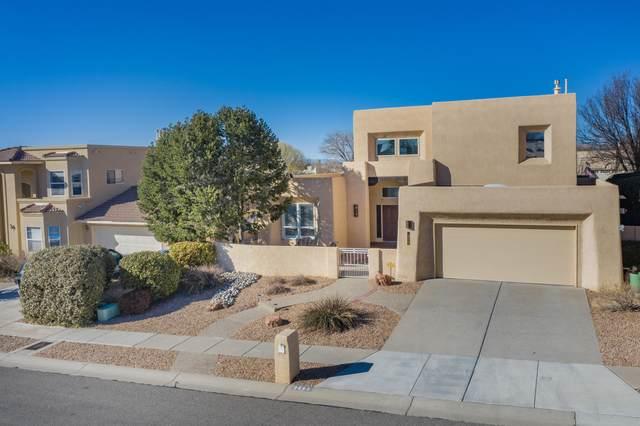 9663 S Redmont Road NE, Albuquerque, NM 87109 (MLS #986867) :: Sandi Pressley Team