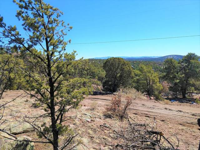 41 Lookout Circle, Datil, NM 87821 (MLS #986918) :: Keller Williams Realty