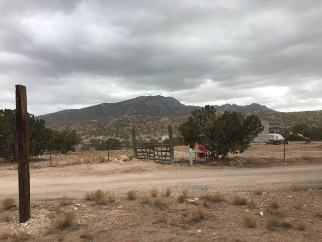 Windmill Trail, Placitas, NM 87043 (MLS #986925) :: Keller Williams Realty