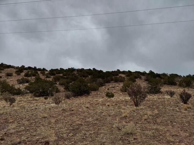 8 Camino De Las Brisas, Placitas, NM 87043 (MLS #986941) :: Keller Williams Realty