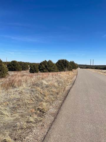 40 Rohrer, Tijeras, NM 87059 (MLS #987141) :: Keller Williams Realty