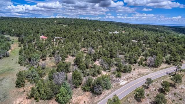 41 Martinez Road, Edgewood, NM 87015 (MLS #987173) :: Keller Williams Realty