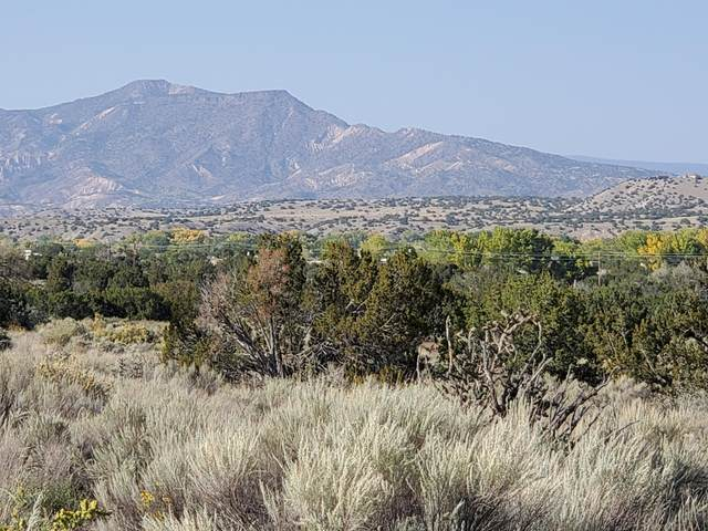 Us Hwy 84, Medanales, NM 87548 (MLS #987321) :: Keller Williams Realty