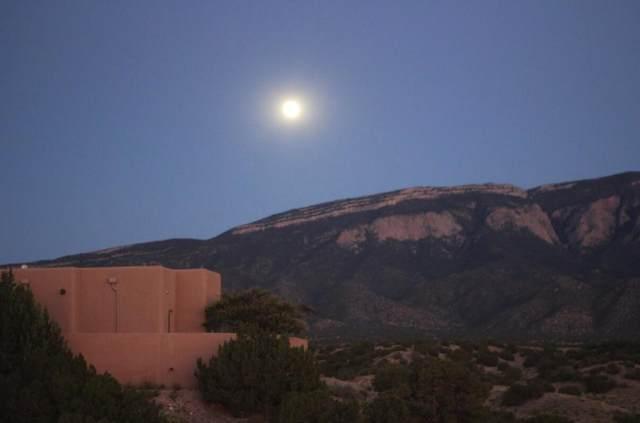 11 Sky Mountain, Placitas, NM 87043 (MLS #987357) :: Keller Williams Realty