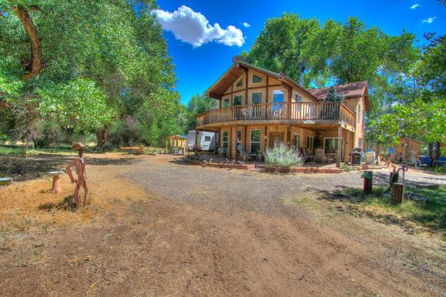 560 Andrews Lane, Corrales, NM 87048 (MLS #987376) :: Keller Williams Realty