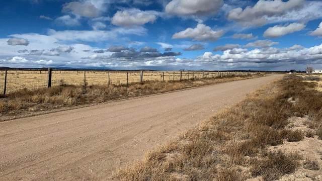 Lot 104 Clara Drive, McIntosh, NM 87032 (MLS #987443) :: Keller Williams Realty