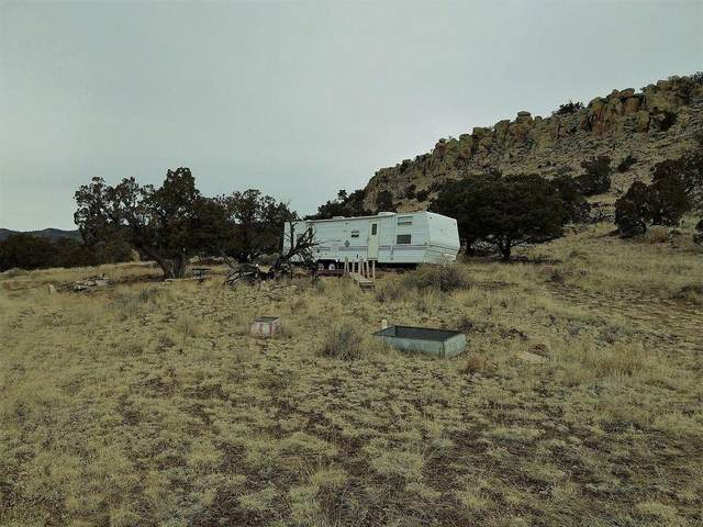42 Raven Loop, Datil, NM 87821 (MLS #987490) :: Keller Williams Realty