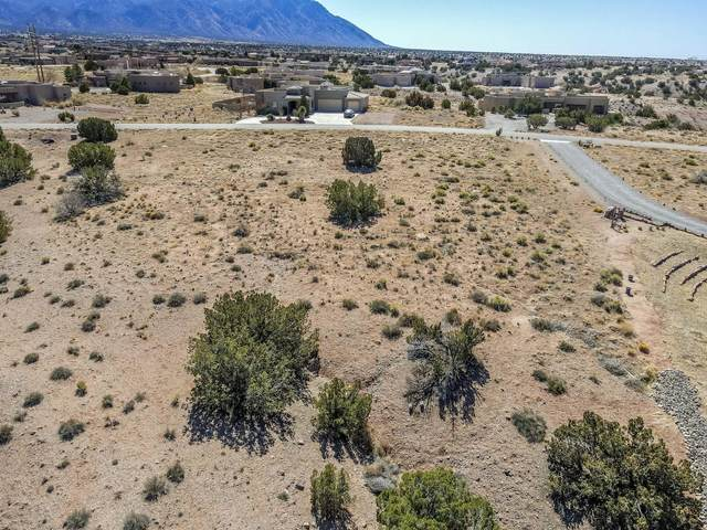 Mimbres Court, Placitas, NM 87043 (MLS #987688) :: The Buchman Group