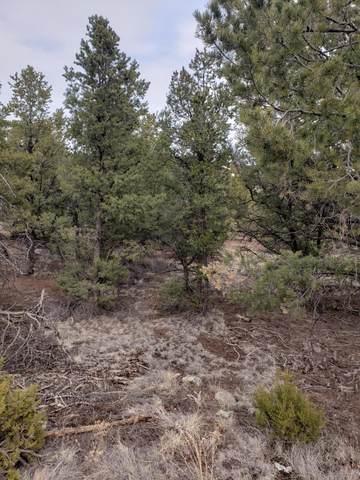 Homestead Trail, Datil, NM 87821 (MLS #987743) :: The Buchman Group