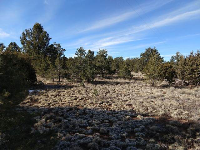 26 Turquoise Trail, Datil, NM 87821 (MLS #987770) :: Keller Williams Realty