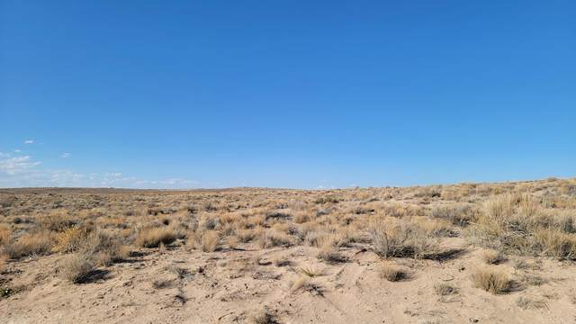 Marksburg NE, Rio Rancho, NM 87144 (MLS #987790) :: The Buchman Group