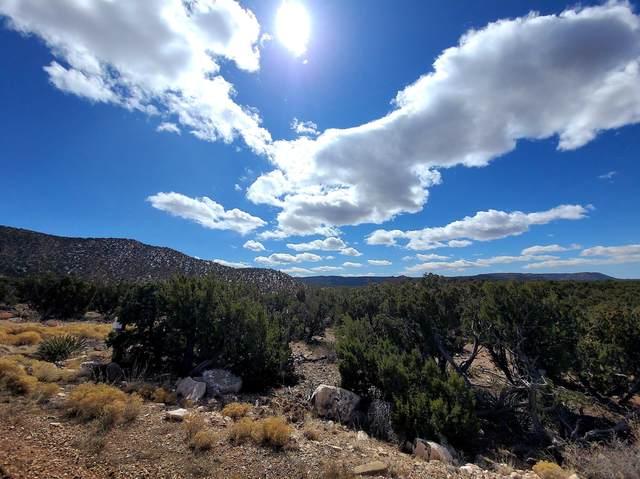 39 Juh Trail, Mountainair, NM 87036 (MLS #987826) :: The Buchman Group