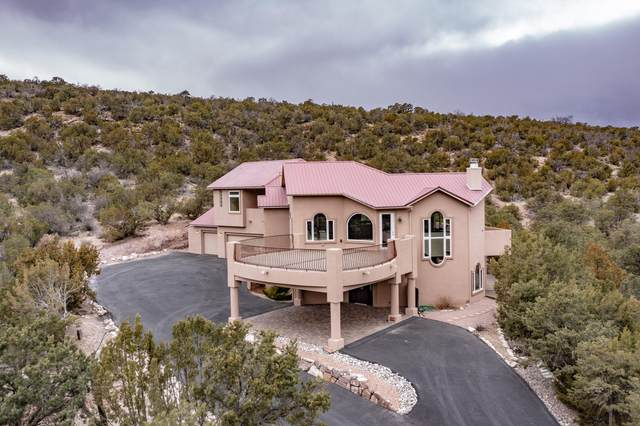 928 State Highway 165, Placitas, NM 87043 (MLS #987832) :: The Buchman Group