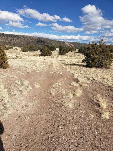 78 Northside Dr, Quemado, NM 87829 (MLS #987938) :: The Buchman Group