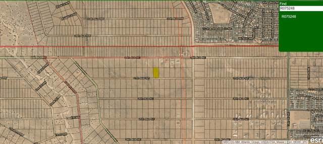 Rio Rancho Estates Avenue NW, Rio Rancho, NM 87124 (MLS #988018) :: The Buchman Group