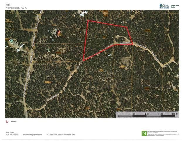 25 Tebbetts Road, Edgewood, NM 87015 (MLS #988060) :: Keller Williams Realty