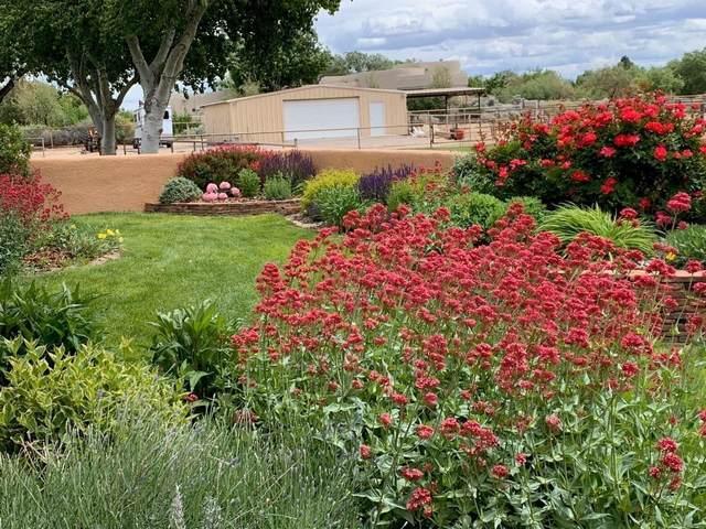 1012 Mission Valley Road, Corrales, NM 87048 (MLS #988116) :: Keller Williams Realty