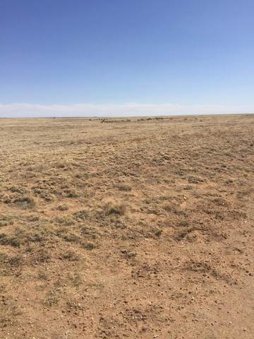 Tract 119 Marshall, Estancia, NM 87016 (MLS #988121) :: Campbell & Campbell Real Estate Services