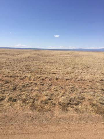 San Luis Drive, Moriarty, NM 87035 (MLS #988123) :: The Buchman Group