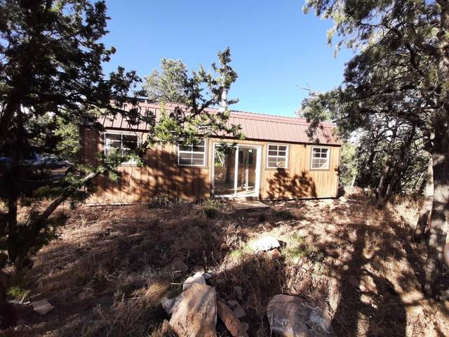 Williams Rd, Edgewood, NM 87015 (MLS #988130) :: The Buchman Group