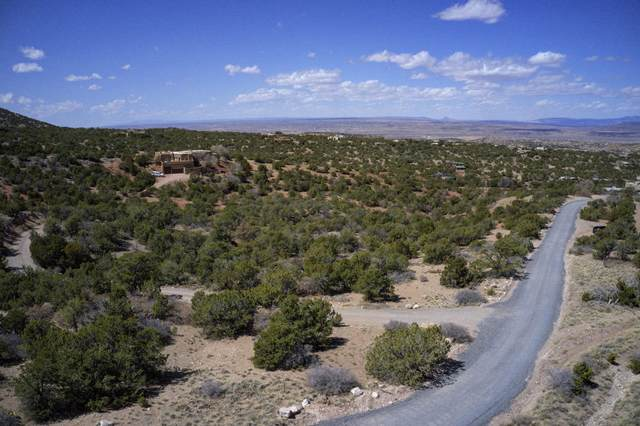 Tunnel Springs Road, Placitas, NM 87043 (MLS #988156) :: The Buchman Group