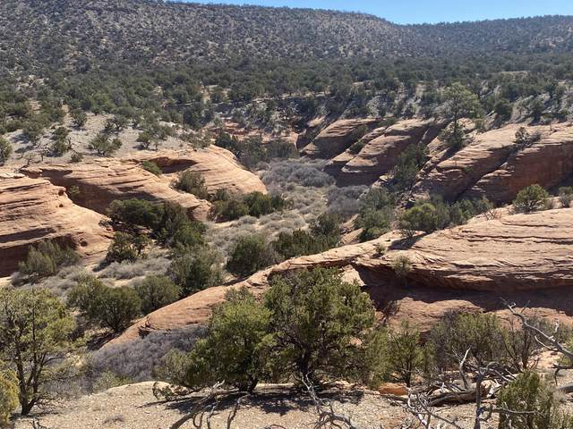 Lot 4 Eagle Rock Ranches, Prewitt, NM 87045 (MLS #988171) :: Campbell & Campbell Real Estate Services