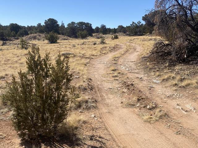 Lot 5 Eagle Rock Ranches, Prewitt, NM 87045 (MLS #988172) :: The Buchman Group