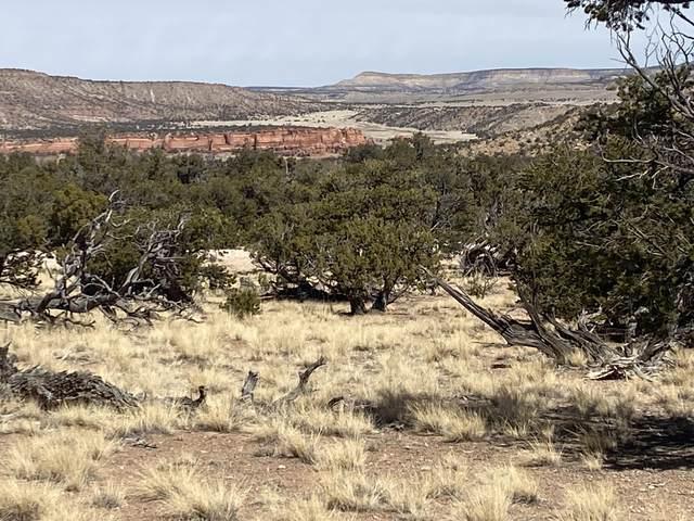 Lot 14 Triple R Ranches, Prewitt, NM 87045 (MLS #988173) :: The Buchman Group