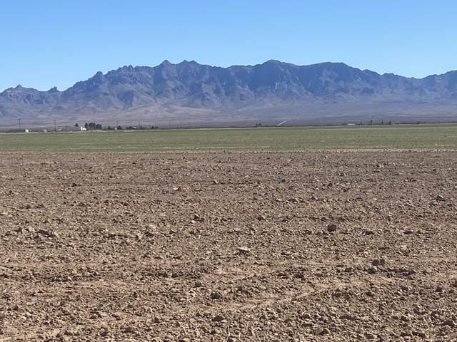 Separ Hay & Cattle Farm, Lordsburg, NM 88045 (MLS #988176) :: Sandi Pressley Team