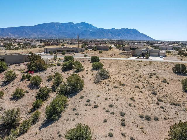 Lot 68 - Mimbres Court, Placitas, NM 87043 (MLS #988269) :: The Buchman Group