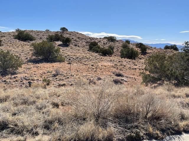 2230 Venada Road NE, Rio Rancho, NM 87144 (MLS #988307) :: Sandi Pressley Team