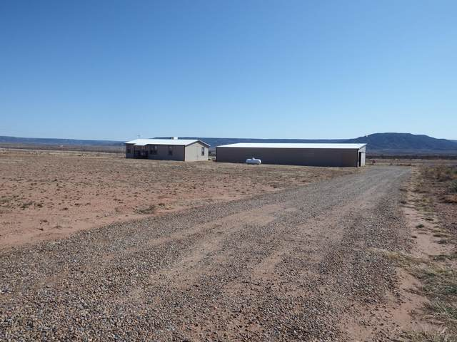 114 Nickel Lane, Conchas Dam, NM 88416 (MLS #988317) :: The Buchman Group