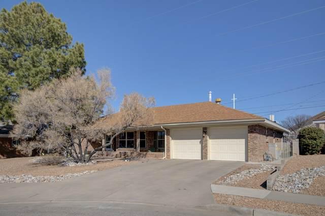 10017 Hendrix Court NE, Albuquerque, NM 87111 (MLS #988320) :: Keller Williams Realty