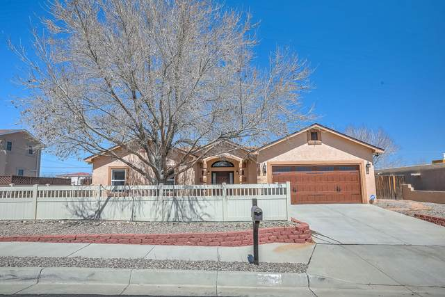 4817 Braniff Avenue NW, Albuquerque, NM 87114 (MLS #988369) :: Keller Williams Realty