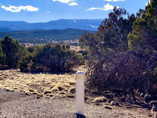 24 Via Entrada, Sandia Park, NM 87047 (MLS #988401) :: Keller Williams Realty