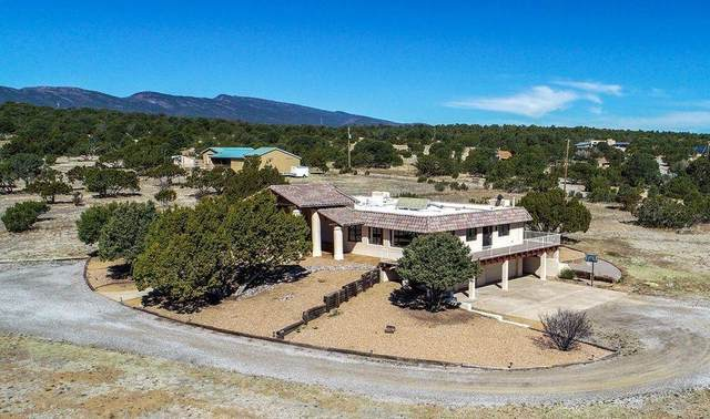 17 Camino Encantado, Tijeras, NM 87059 (MLS #988405) :: The Buchman Group