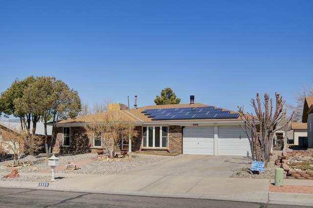6909 Christy Avenue NE, Albuquerque, NM 87109 (MLS #988416) :: Keller Williams Realty