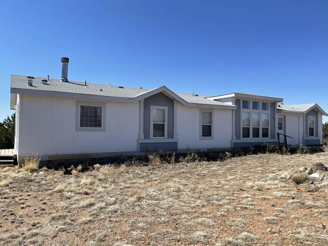 13 Paiute Circle, Quemado, NM 87829 (MLS #988628) :: The Buchman Group