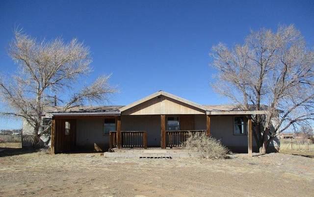17 Pinto Drive, Edgewood, NM 87015 (MLS #988782) :: Keller Williams Realty