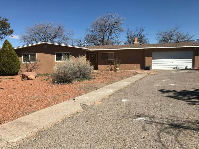 1123 Patricia Circle NW, Corrales, NM 87048 (MLS #988964) :: The Buchman Group