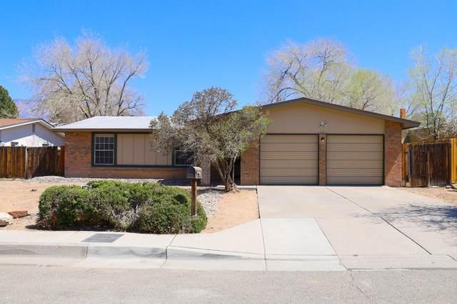 7104 Leona Street NE, Albuquerque, NM 87109 (MLS #988971) :: Keller Williams Realty