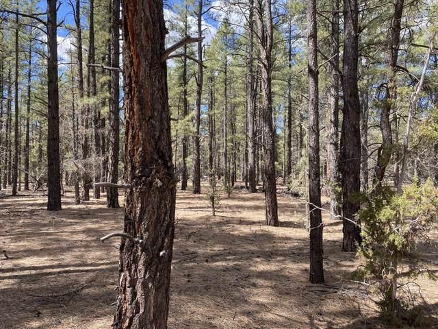 Lot 1 Timberlake Ranch Road, Ramah, NM 87321 (MLS #988977) :: Keller Williams Realty