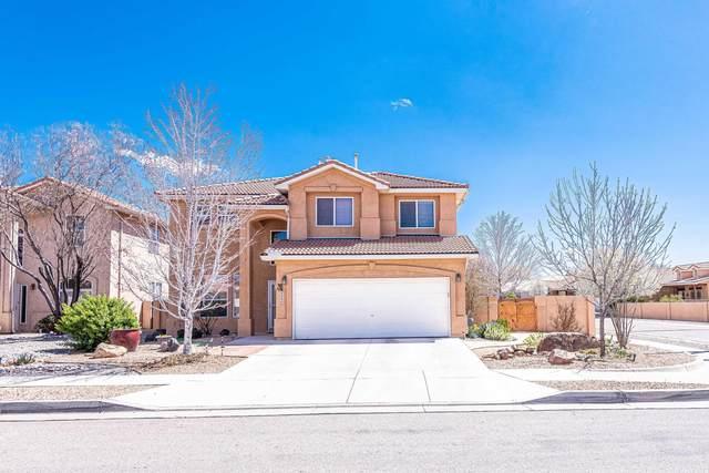 808 Calle Divina NE, Albuquerque, NM 87113 (MLS #988988) :: Keller Williams Realty